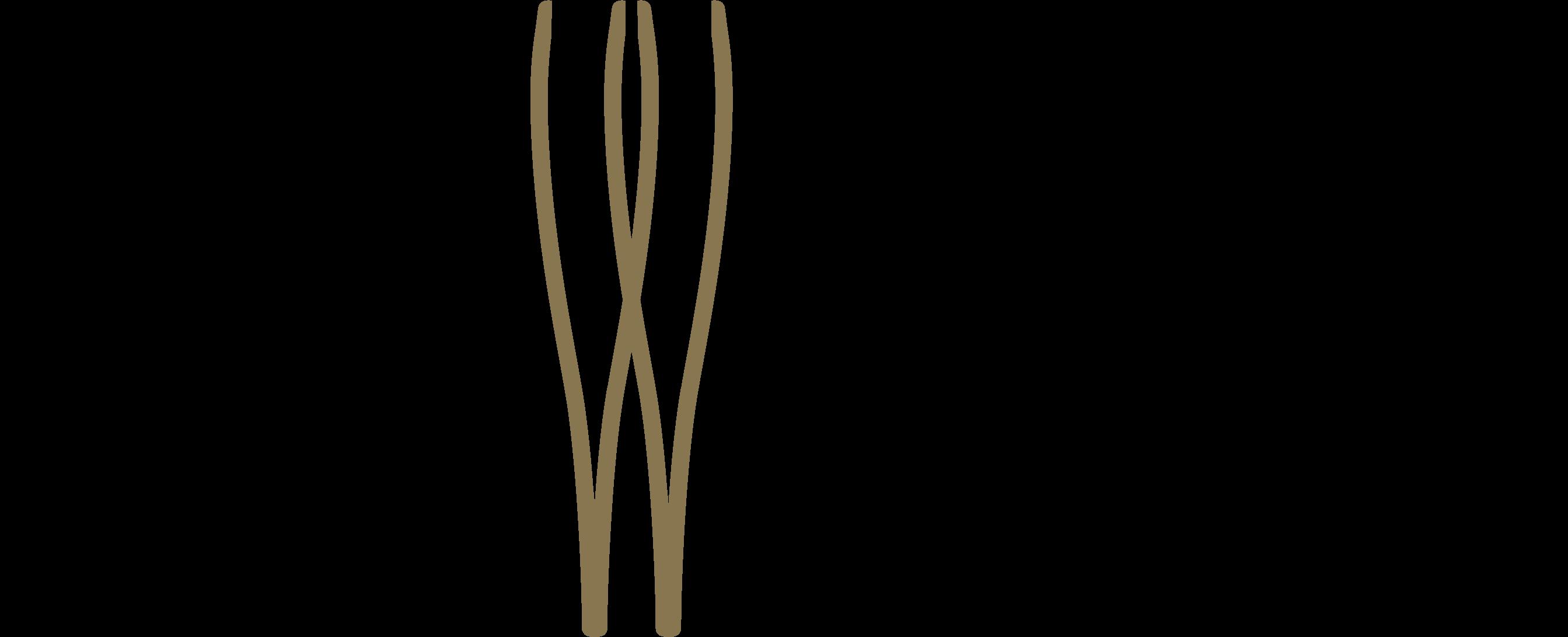 Browology estudio de diseño de cejas en Escazu
